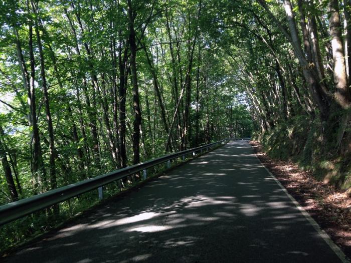 Carretera de Lavares